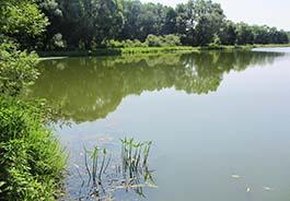 Искусственные водоемы - Пленка для пруда