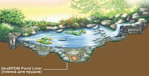 Рисунок водоема